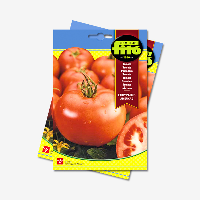 Tomate Early Pack America